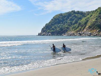 Micha School & Surfboards Paddle Surf
