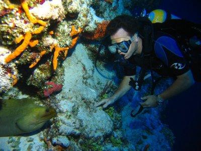 Scuba diving. 2 immersions. Caleta-Punta Sur.