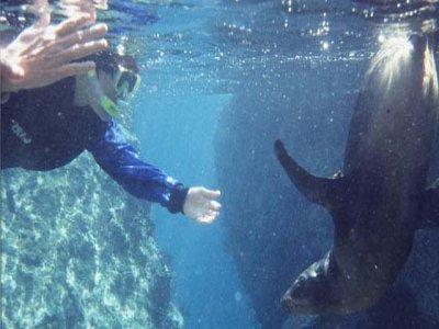 Mar y Aventuras Snorkel