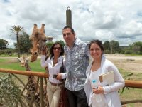 Girafa en Africam Safari