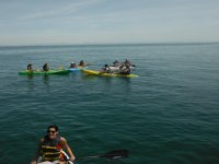 Several kayaks