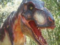 Jurassic replicas