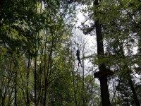 Zip line between the trees