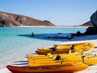 Kayaks amarillos en la playa