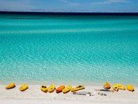 Kayaks frente al oceano