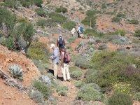 Excursion groups