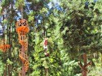 Escaleras del pino