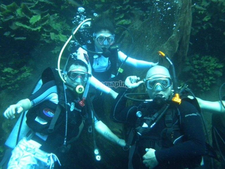 Diving in Veracruz