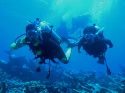 5 hours dive in the coral reefs of Veracruz