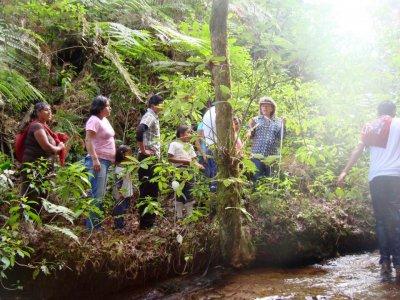Campamento Tlatempa Caminata