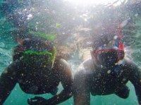 discover the ocean