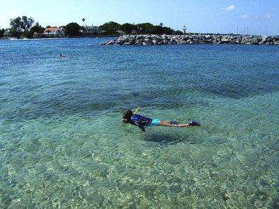 Baja Big Fish Snorkel