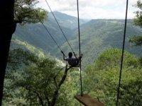 Adrenaline swings