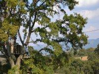 Flying among trees
