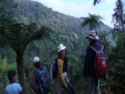 Ecoturismo Cañadas del Pixquiac Caminata