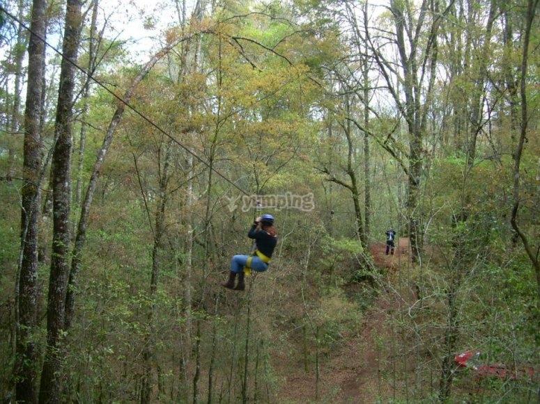Tirolesa en el bosque