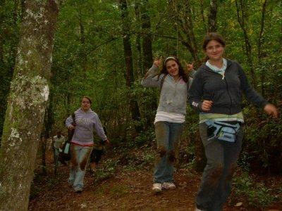 Cabaña 8 personas + caminata guiada en el bosque