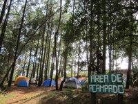 Area de acampado