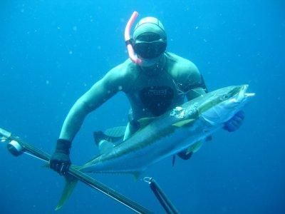 Desea Bajas Pesca