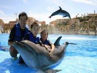 Tour de nado con delfines