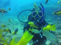 Diving adventure in the Caribbean