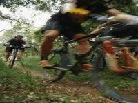Carrera en bicleta por la pista de Monterreal