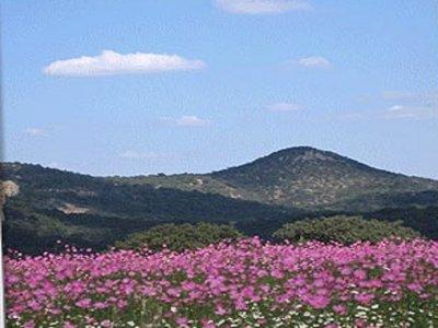 Cabañas Sierra Escondida