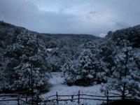 Caminatas en la nieve