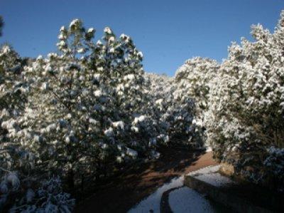 Rancho La Ciénega
