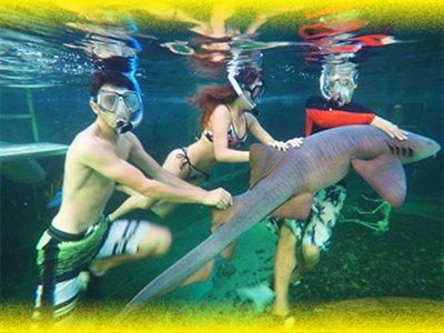 Parque Acuático Splash Vallarta