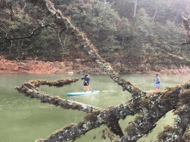 Explorando el lago