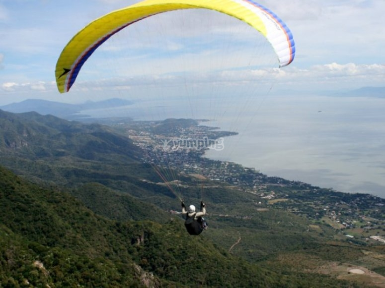 Fly in Chapala