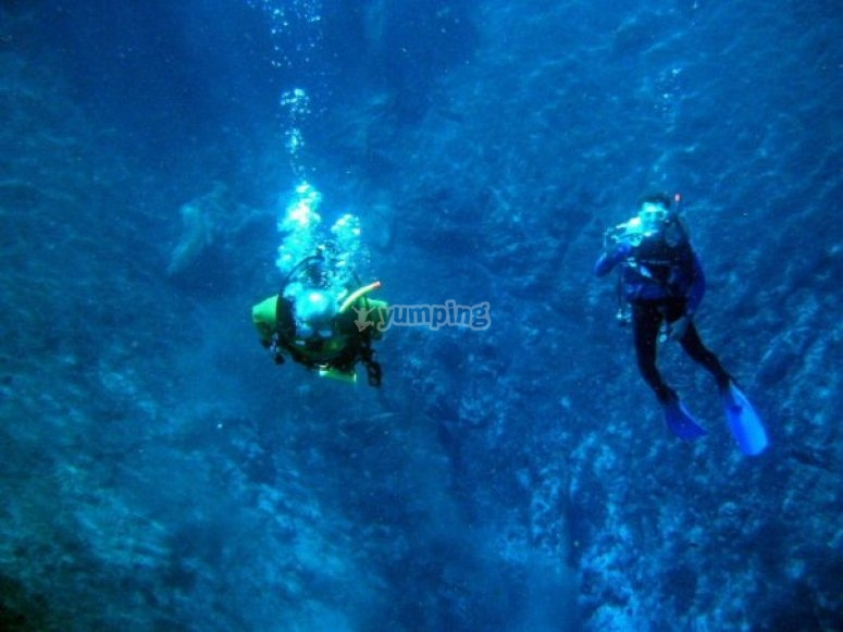 Dive everywhere