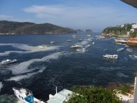 Scuba diving trip, offer for companions. Acapulco