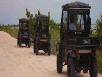 Tours de mini jeeps