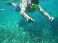 snorkeling in huatulco