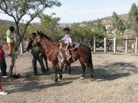 Baby riding a horse