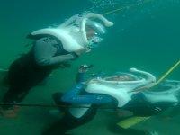 Sea Trek in Los Cabos