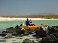 Kayaks Crystal
