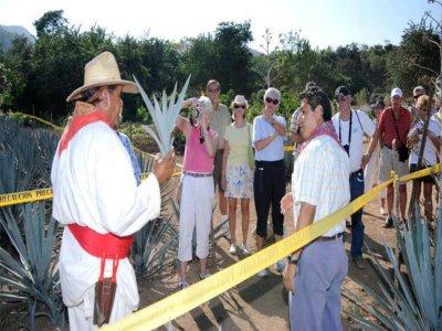 Rancho Peña Blanca Caminata