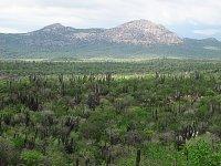 Landscapes of Los Cabos