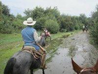 Horseback riding nature