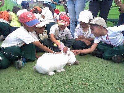 Visitas escolar a granja en Tlalpan 4 horas