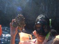 Snorkel en las marietas