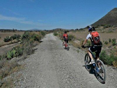 Combo ciclista de 4 rutas dirigidas por guía