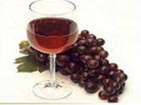 ruta vino
