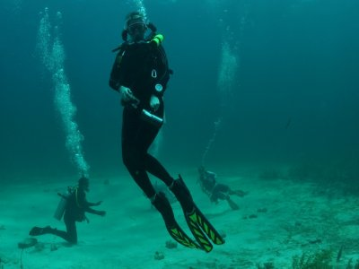 Dive 2 dives Baja California Sur