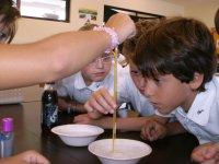 Jóvenes atentos al experimento
