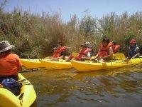 Kayaking moretano field
