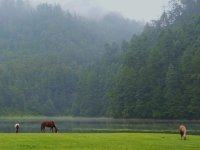 Parque nacional zempola